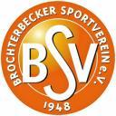 bsv-logo_bronze.jpg