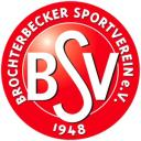 bsv-logo_rot.jpg
