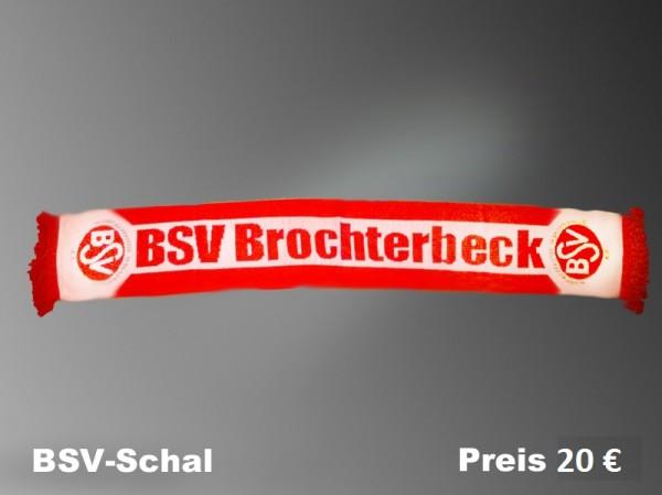 BSVschal
